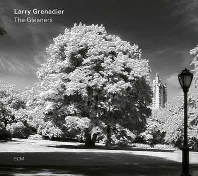 Larry Grenadier ‎– The Gleaners (used)