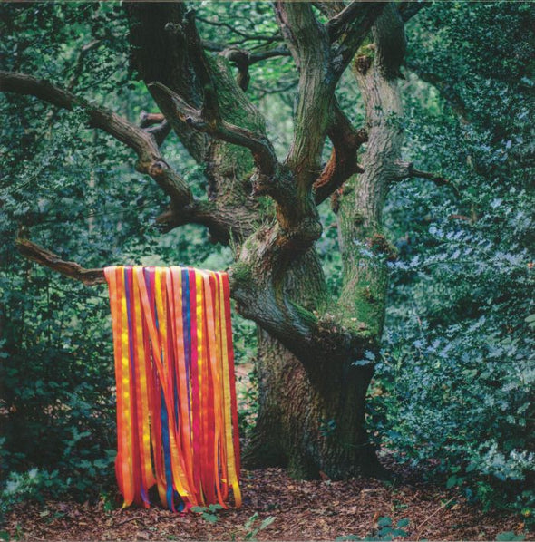 James HOLDEN/THE ANIMAL SPIRITS - The Animal Spirits