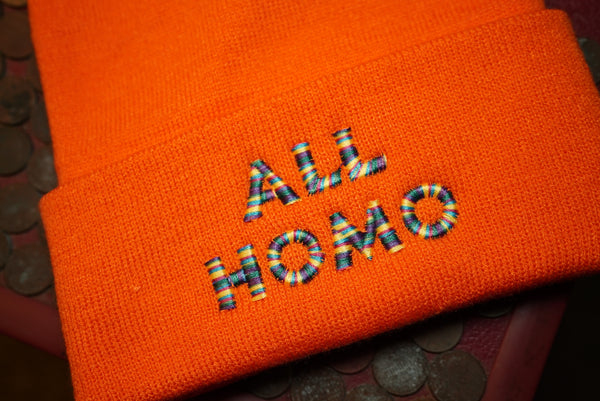All Homo, Gay, Lesbian, LGBTQ Embroidered Beanie