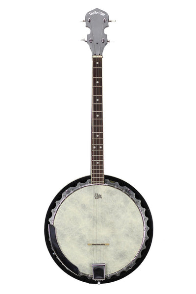 Used The Bridge Tenor Banjo