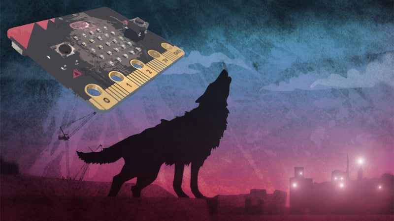 Protect Your Wolfblood Secrets With The microbit