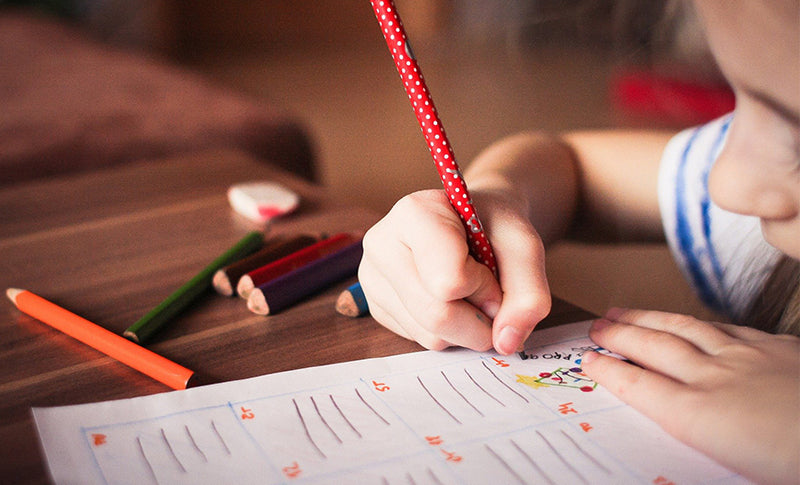 10 Recommended Products to Support Home Schooling