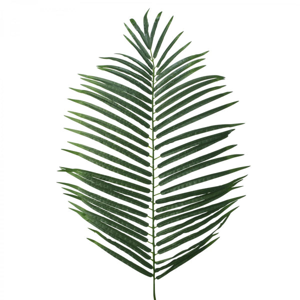 "18"" x 38"" Artificial Fern Leaves 1 ct."