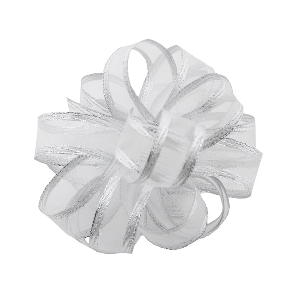 #3 Regal Chiffon Ribbon