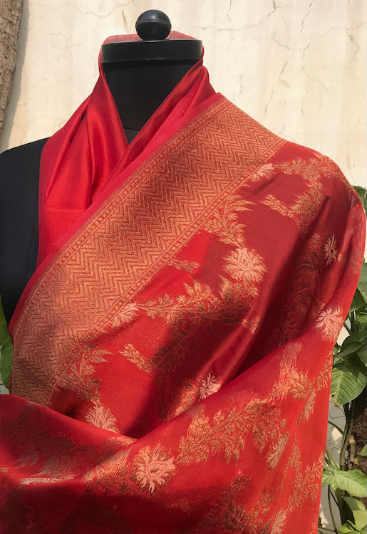Brick Red Kora Georgette Sari