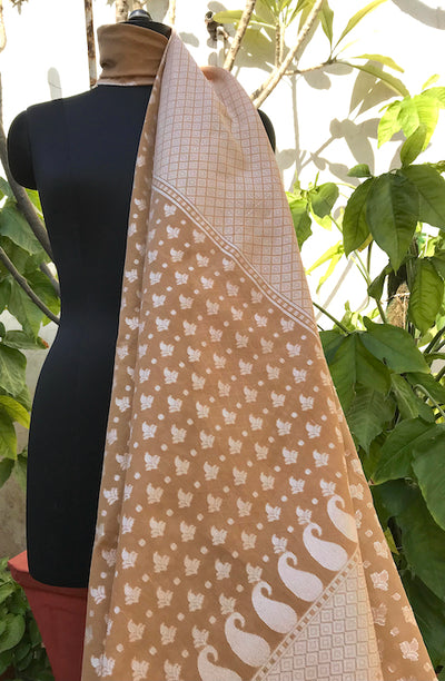 Toffee Beige Cotton Cutwork Saree
