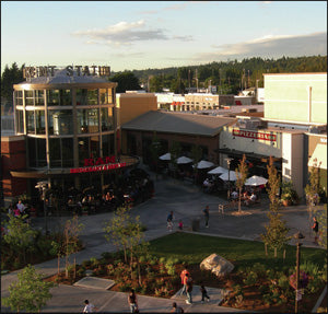 Outdoor Movies in Kent, Washington