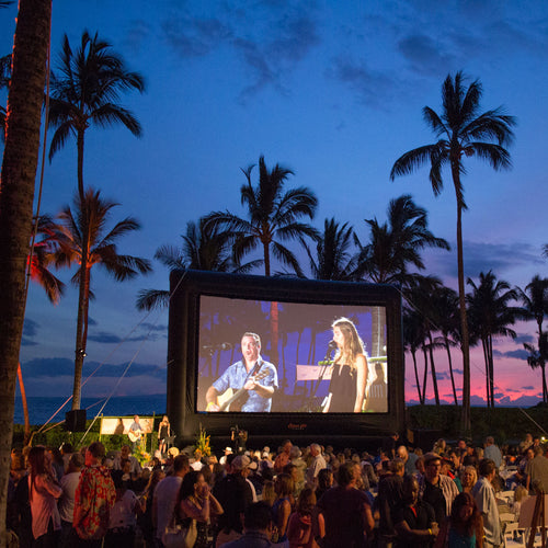 Elite Outdoor Movie Screen Kit 30'