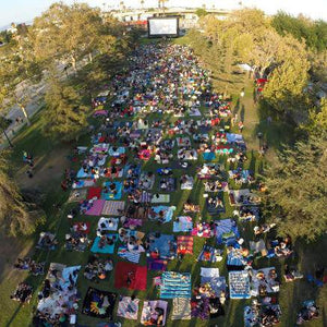 40 ft Elite Outdoor Movie System Drone View