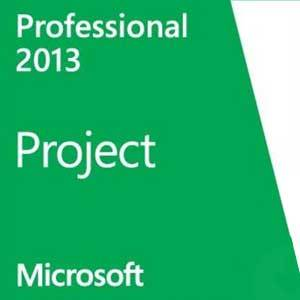 Microsoft Project Professional 2013