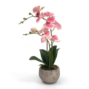 Artificial Potted Orchid - Pink