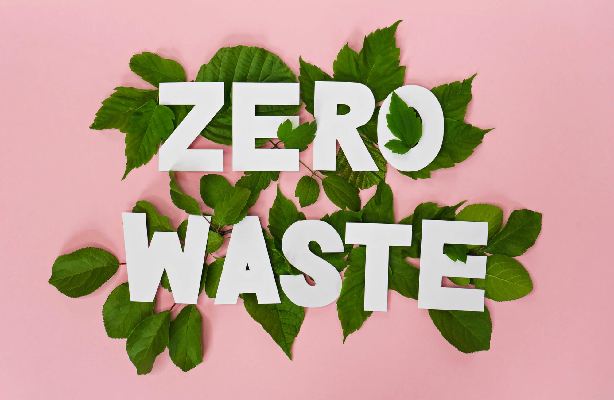Zero Waste Letters With Green Leaves and Pink Background