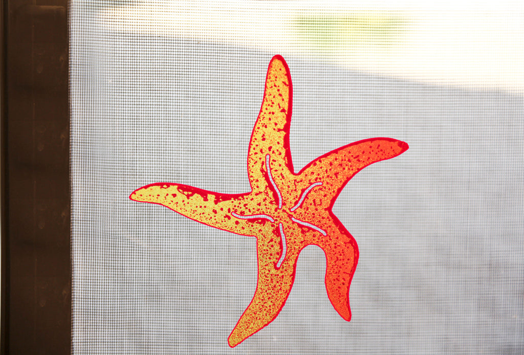 Starfish Screen Magnet