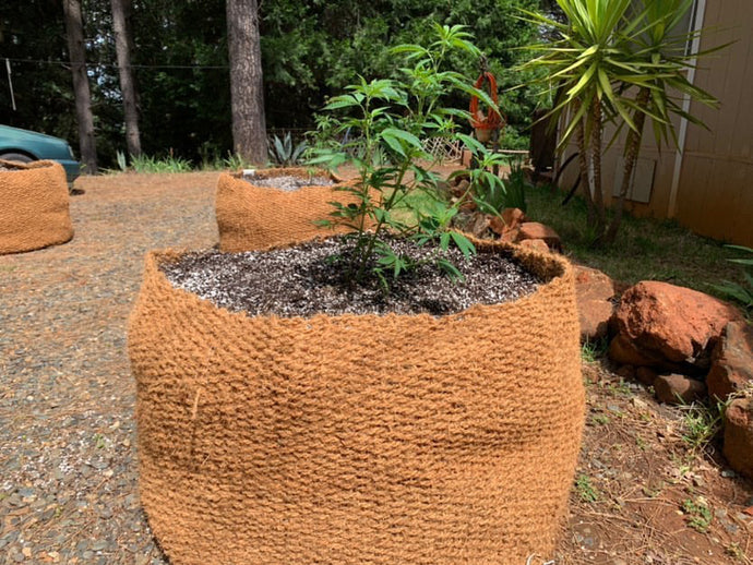 CoirNet - 400 Gallon pot (5 Pot bundle)