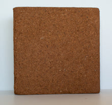 Load image into Gallery viewer, Pure Coco Organic Coco Coir compressed 11lbs naked block