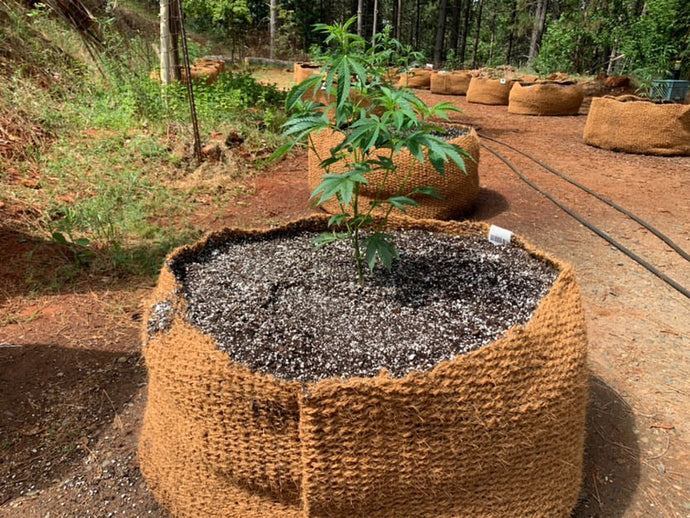 CoirNet - 45 Gallon coir pot