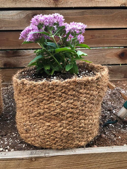 CoirNet 10 Gallon coir pot
