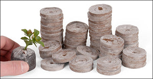 Pure Rooters 36MM Coco Plugs/Pellets