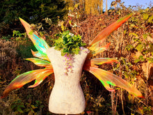 Load image into Gallery viewer, Autumn fairy wings