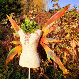 Autumn fairy wings
