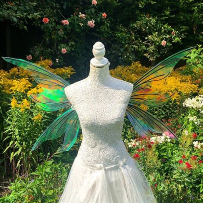 Whimsical fairy wings