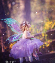 Load image into Gallery viewer, Fairy photography Child iridescent fairy wings