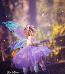 Fairy photography Child iridescent fairy wings