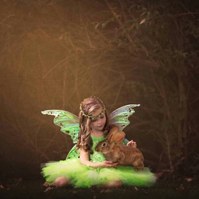 Child iridescent fairy wings photography