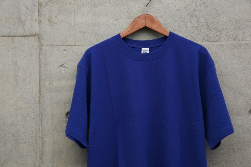 VA × FRUIT SS Tee(BLUE)