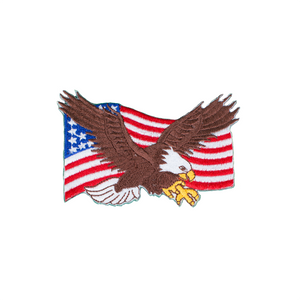 Eagle With USA Flag Patch