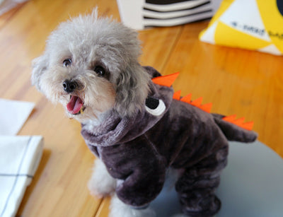 Winter Costume Clothing for Pet