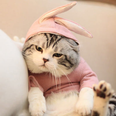 Costume Rabbit Style Hoody Winter Clothes For Pet