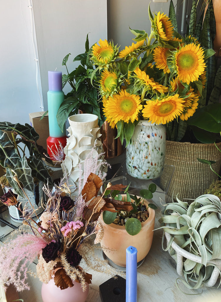 Flower Bar, Sunflower Bundle
