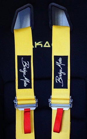 Bridgemoto FIA Six Point Harness
