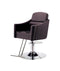 PROFESSIONAL EQUIPMENT CHAIR  (BROWN) 8926 | KARRIGE KAFE