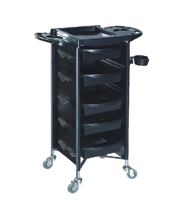 PROFESSIONAL EQUIPMENT SALON TROLLEY BQ-509 | KARROCË