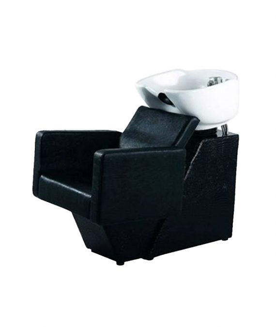 PROFESSIONAL EQUIPMENT SHAMPOO BASIN CHAIR BQ-394 | LAVATEST