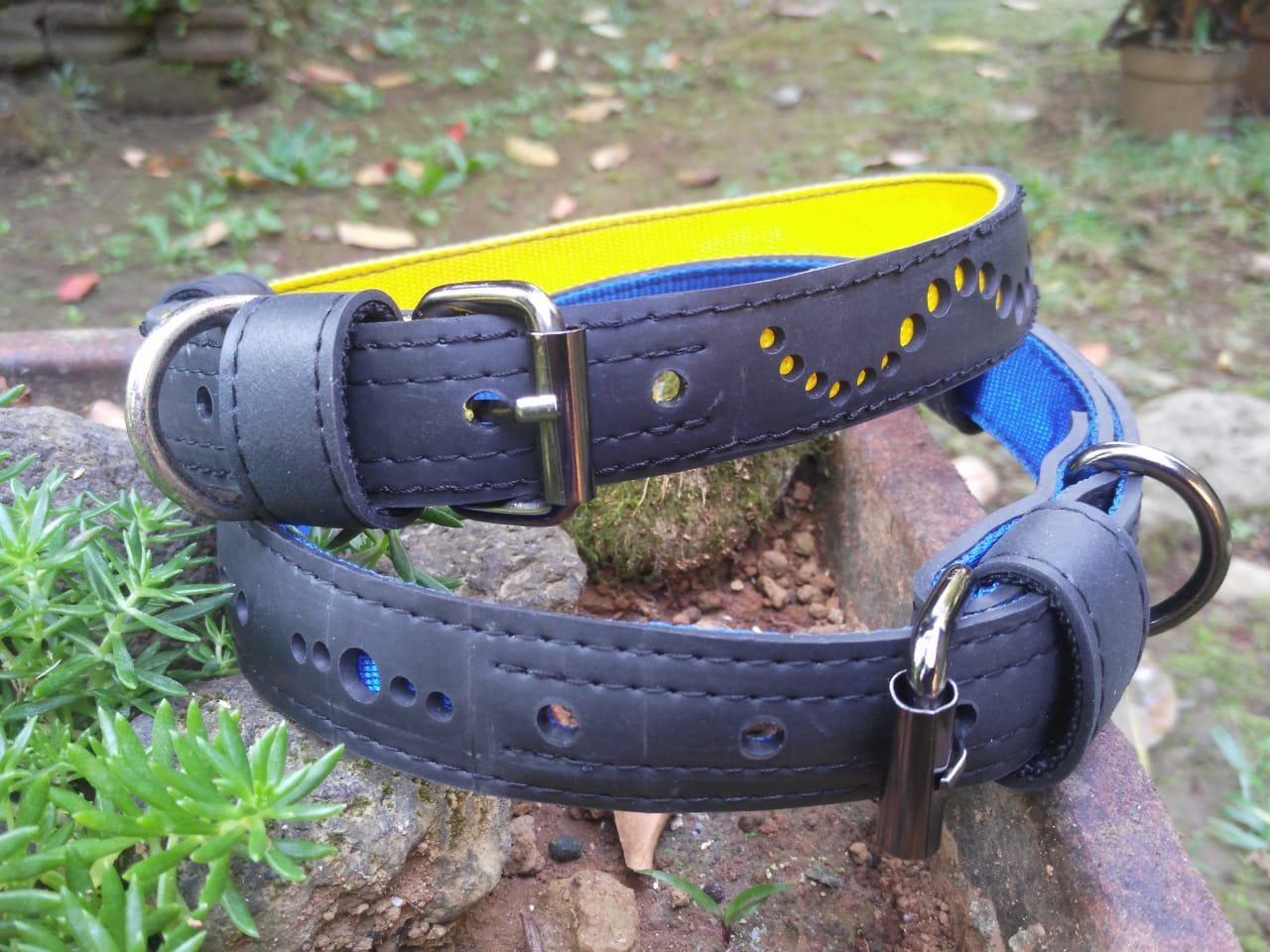 Eco Friendly Recycled Inner Tube Vegan Dog Collar by Paguro Upcycle