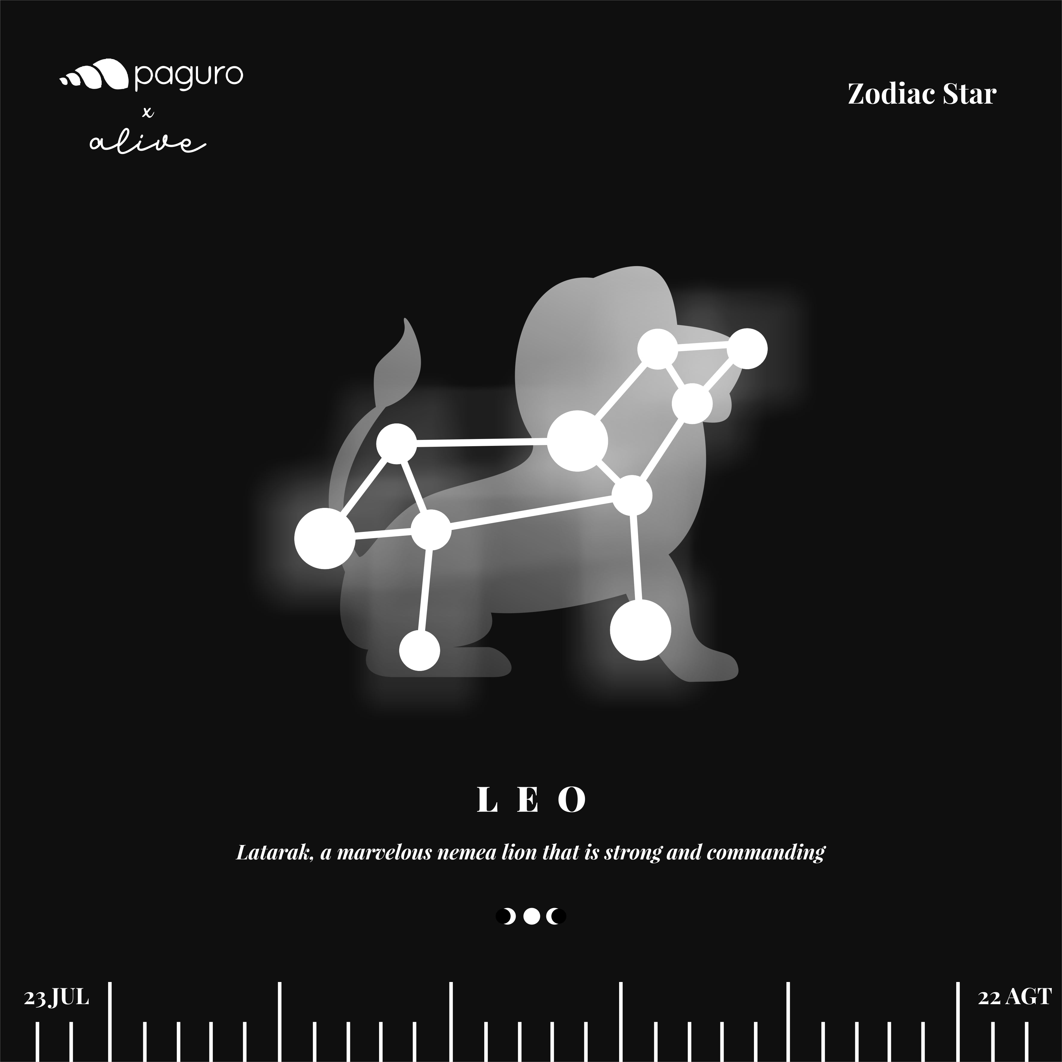 Pre Order: Leo Zodiac Sign Sustainable Necklace