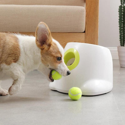 Automatic Dog Ball Launcher