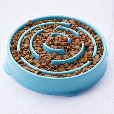 Slow Digest Pet Bowl