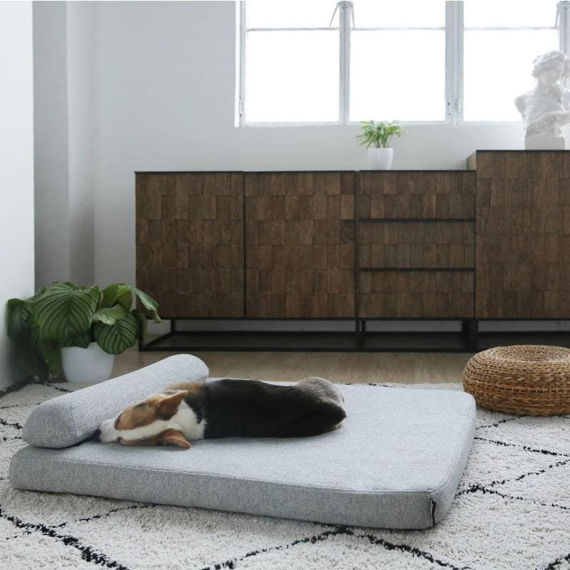 Orthopedic Memory Foam Dog Bed
