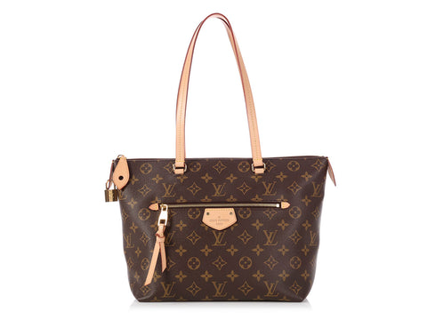Louis Vuitton Monogram Iéna PM