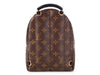 Louis Vuitton Monogram Mini Palm Springs Backpack