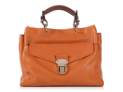 Mulberry Pumpkin Polly Pushlock Tote