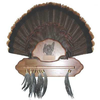 Holds 12 Beards & Tail - Matuska Taxidermy