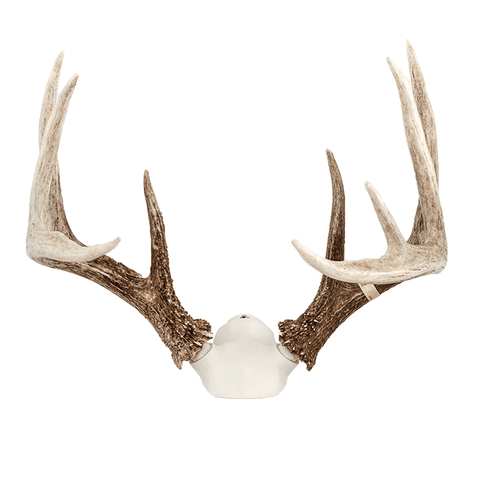 """The Change Up"" Antler Display Kit"