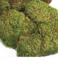 Moss Clumps - Matuska Taxidermy