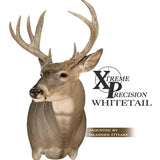 XP Semi Sneak | Xtreme Precision Whitetails - Matuska Taxidermy