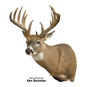 XP Southwest Series | Xtreme Precision Whitetails